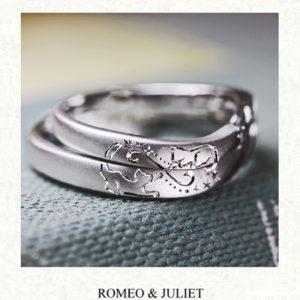 ネコのカップルが見つめあう結婚指輪|千葉・柏 ヨー&マーレの新作日記