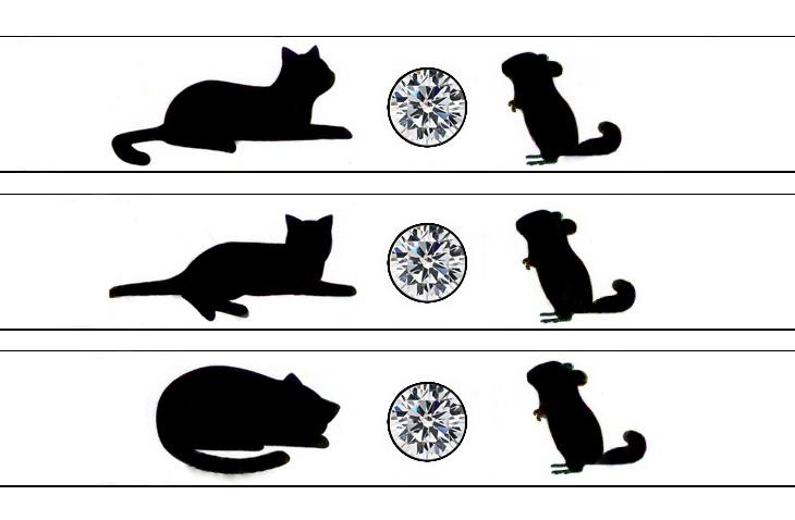 結婚指輪に入れるネコとネズミの模様デザイン