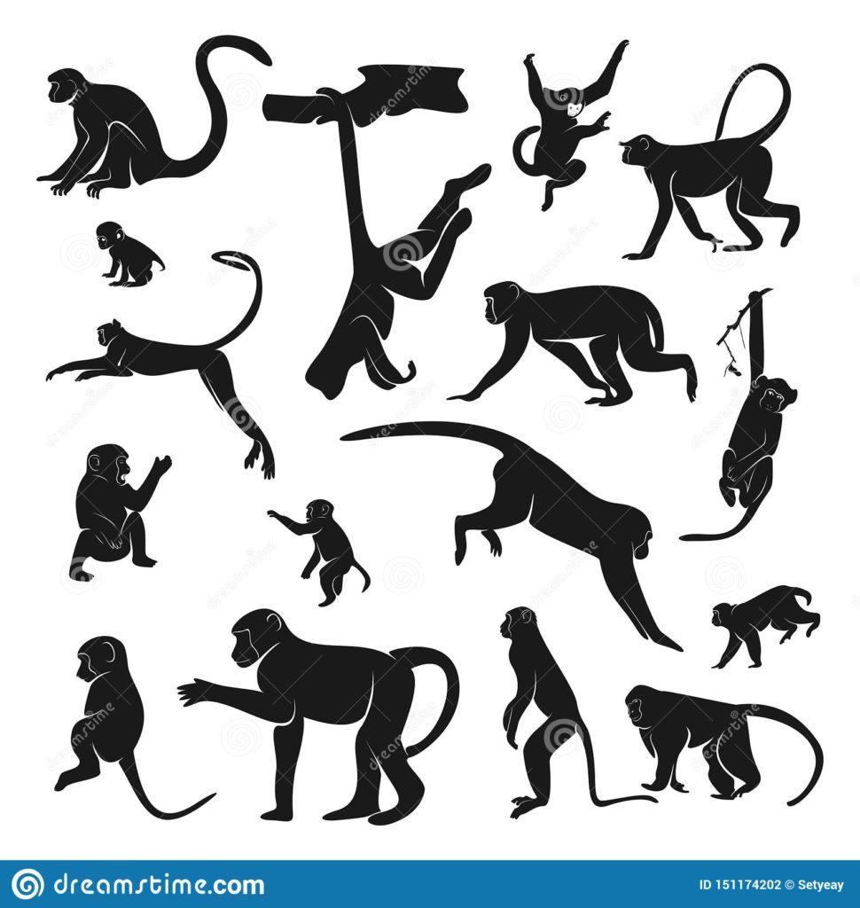 猿のモチーフを集めたデザイン画一覧