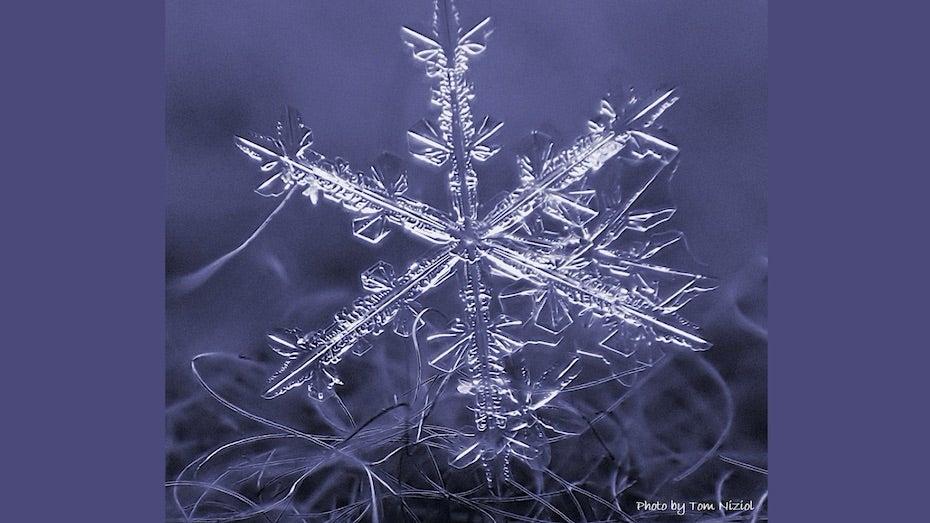 雪の結晶のデザイン
