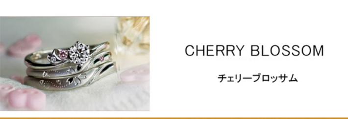 春とサクラの香りのがテーマの結婚指輪と婚約指輪のセットリングコレクション